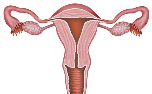 什么情况会导致输卵管堵塞?为什么堵?