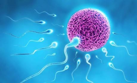 右侧卵巢不排卵是什么原因?