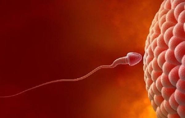 你的精子健康吗?哪些疾病会导致男性不育?