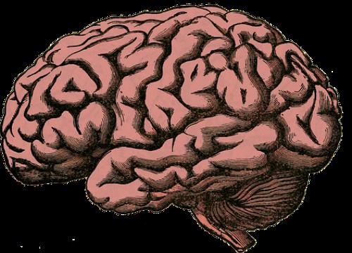 脑瘫可以用手术治疗吗?有多少种方法呢?