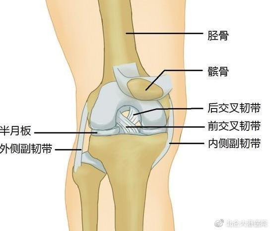 年纪轻轻就得了膝骨性关节炎,只因这件事没处理好!