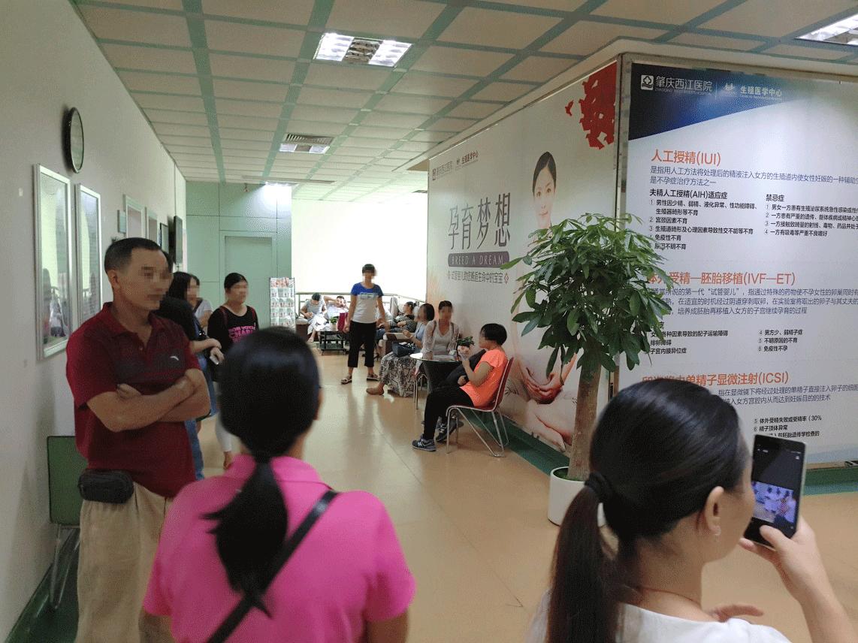 肇庆西江医院试管婴儿感恩公益活动:拥抱坚持仰望的人