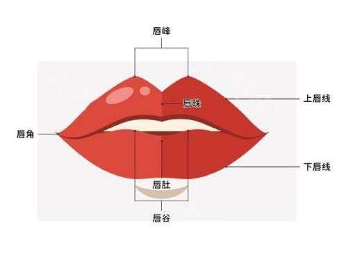 玻尿酸丰唇效果贵不贵?玻尿酸丰唇后需要注意哪些问题?