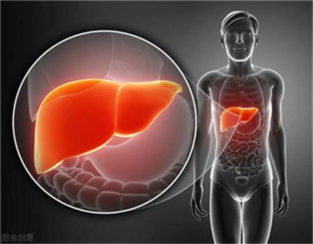 引起肝硬化的原因有哪些呢?